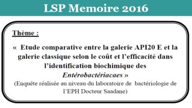 Photo of la galerie API20 E et la galerie classique selon le coût et l'efficacité dans l'identification biochimique des Entérobactériacaes