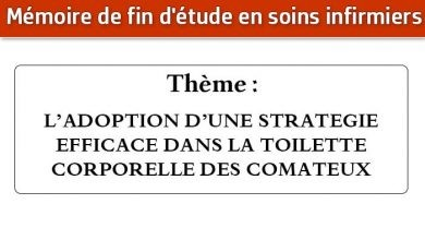 Photo of Mémoire infirmier : L'ADOPTION D'UNE STRATEGIE EFFICACE DANS LA TOILETTE CORPORELLE DES COMATEUX