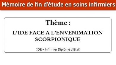Photo of Mémoire infirmier : L'IDE FACE A L'ENVENIMATION SCORPIONIQUE