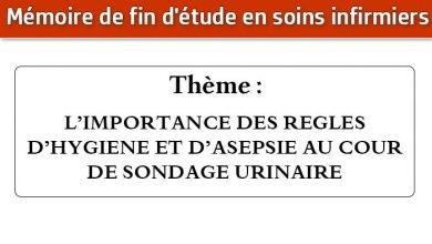 Photo of Mémoire infirmier : L'IMPORTANCE DES REGLES D'HYGIENE ET D'ASEPSIE AU COUR DE SONDAGE URINAIRE