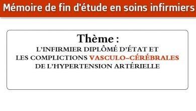 Photo of Mémoire infirmier : L'INFIRMIER DIPLÔMÉ D'ÉTAT ET LES COMPLICTIONS VASCULO-CÉRÉBRALES DE L'HYPERTENSION ARTÉRIELLE