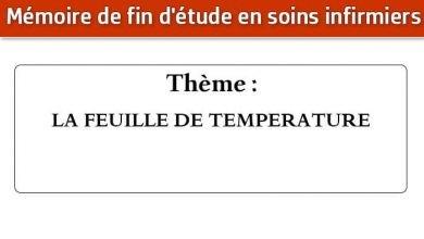 Photo of Mémoire infirmier : LA FEUILLE DE TEMPERATURE
