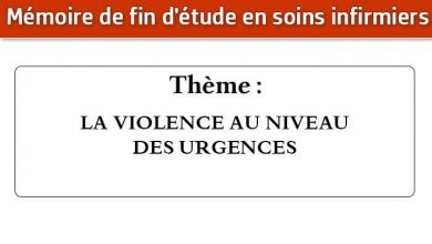 Photo of Mémoire infirmier : LA VIOLENCE AU NIVEAU DES URGENCES