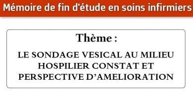 Photo of Mémoire infirmier : LE SONDAGE VESICAL AU MILIEU HOSPILIER CONSTAT ET PERSPECTIVE D'AMELIORATION