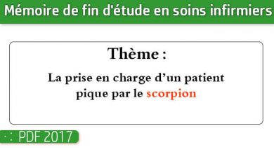Photo of Memoire infirmiers : La prise en charge d'un patient pique par le scorpion